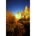 nightphotography landscape temple sky trees