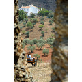 chill out chilling espaa spain alora holiday uk photo foto campo