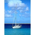 sailboat aruba