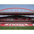 Stadium Benfica Portugal
