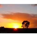 sunrise morning work perth littleollie