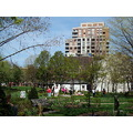 Taken at 3:29pm.At St.James Park-in the St.Lawrence Market District-Toronto,Ont.,On Friday,May 3,...
