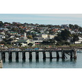 Oamaru harbour with the shags on the old pier best seen in original size