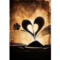 heart book light love