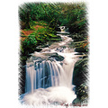Torc River Waterfall Killarny Kerry Ireland Peter OSullivan
