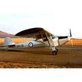 flying aircraft auster