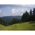 koprivshtica bulgaria summer nature green forest