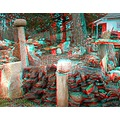 anaglyph 3D stereo rocks collection garden