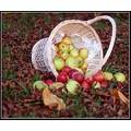 Apples Basket Fruit Autumn Fall