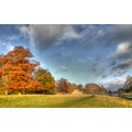 Peak District Derbyshire Chatsworth autumn
