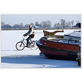 winter ice biker bike Friesland Holland