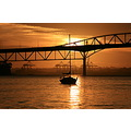 sunrise auckland harbour bridge reflection