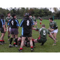 cheltenham 2nds rugby