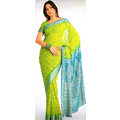Light Green Viscose Saree with Blouse