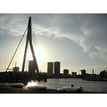 rotterdam erasmus bridge brug maas river water sunset dusk city holland skyline