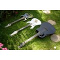 guitars outdoors