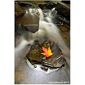 Landscape water stream river rock leaf autumn Spideyj