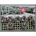wreaths gardencentre bandsix