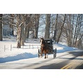 Amish buggy in the snow