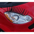 smart car eyelashes