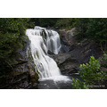 Waterfall Tellico Plains Cherokee National Forrest