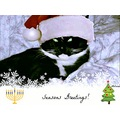 seasonsgreetings2012 tuxedocatclub mellie