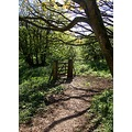 path brownsham devon