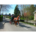 carriage voorweg zoetermeer holland