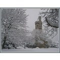 wintergardenfriday funfriday tower