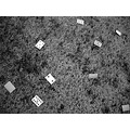 blackwhite bw playing cards grass