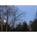 moon moonset sun sunrise reflection garden tree house