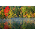 Autumn Alabama pond water reflection Bamawester trees leaves nature outside