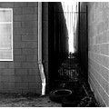 blackwhite bw alley tires