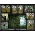 burnhambeeches collage monstertrees