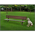 Dog Waiting  A statue of a dog waits at a bench for its masters voice.  Note: My apologies to...