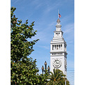 sanfrancisco clocktower summer sffph trees