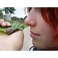 snail nose closeup girl red hair