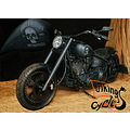 fotostudio paintpictures viking cycle lbeck