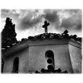 bw church cross bird tree clouds