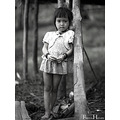 Location : Bario,Sarawak