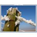snow ice winter nature januari landscape holland CH1988