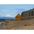 signs washington mounthood
