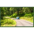 car France summer country nature road tree