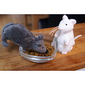 mouse mice catfood