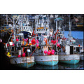 boats harbour harbor sea colours fishing vessel boat ship iceland pink