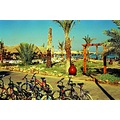Sharm AlSheikh redsea egypt resort palm sinai nikon f3