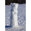 winter snow polarbear