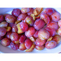 food England plums Victoriaplums purple