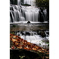 Pourakino Falls - also in the Catlins.... there are several more waterfalls in the area within 5-...