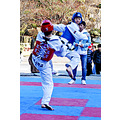Taekwondo people sports action korea